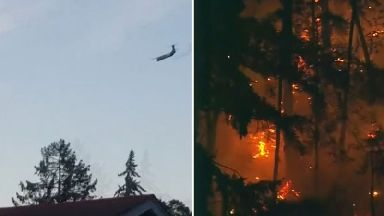 Plane stolen from Seattle airport crashes after being chased by fighter jets