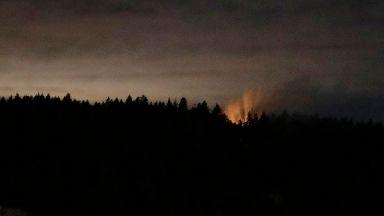 Plane stolen by 'suicidal' employee crashes near Seattle