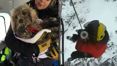 Rescue: Ben was on a narrow ledge. Cairngorms Costguard