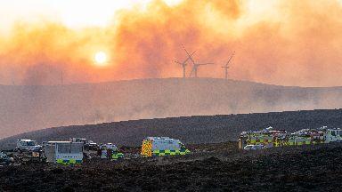 Wildfire Moray
