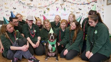 Staff at Edinburgh Cat and Dog home celebrate as staffie Star leaves after five years