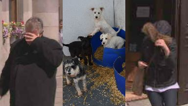 Cruelty: Frank James and Michelle Wood were found guilty. Puppy Farm