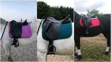 Saddles stolen from Cabin Equestrian Centre in Inverurie