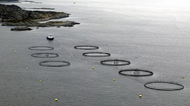Fish Farm: Ten new sites will create 100 jobs.