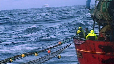Report: Joshua Aryeetey was carried overboard by a net.