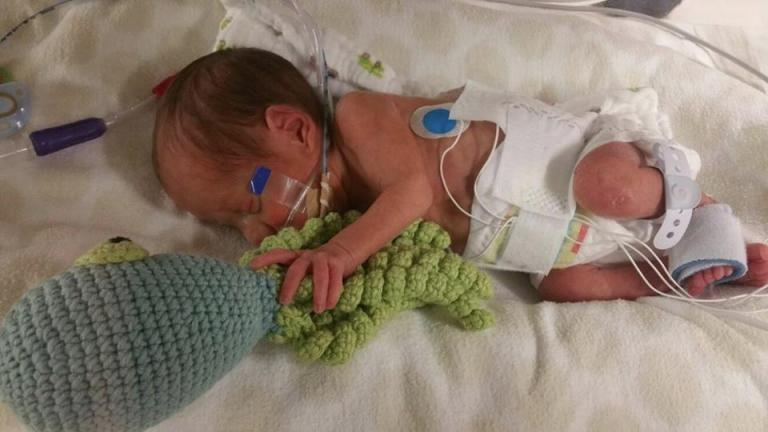 Cuddly octopuses help Scotland's premature babies feel safe