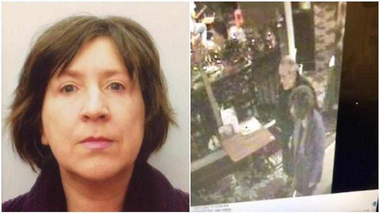 Missing woman last seen on pub's CCTV traced safel