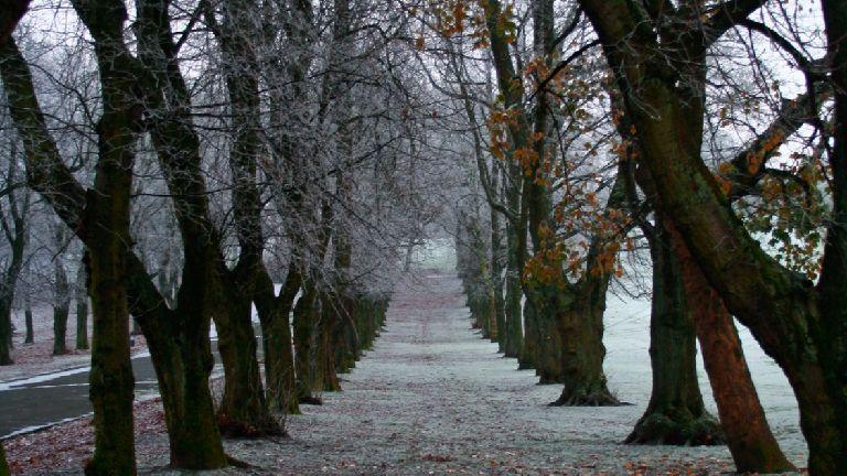 Scots cities endure coldest temperatures in seven