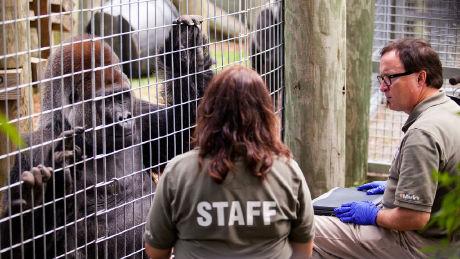 Episode 1, Toronto Zoo