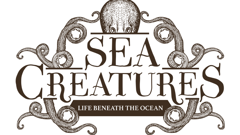 Sea Creatures Logo